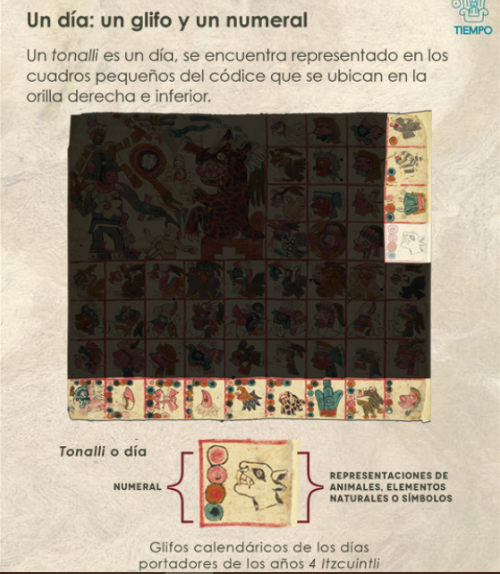 códice prehispánico códice Tonalámatl de Aubin