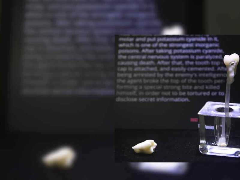 diente-de-cianuro-espias
